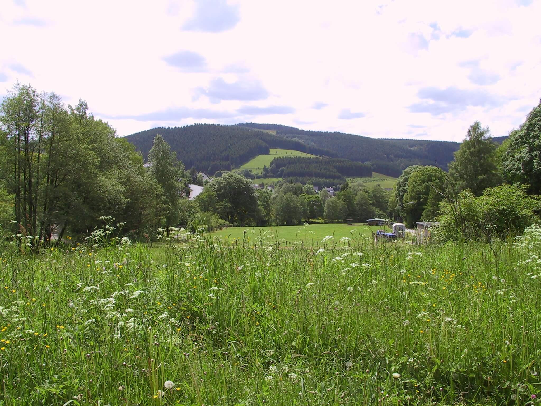 2013 Niedersfeld1 (158)